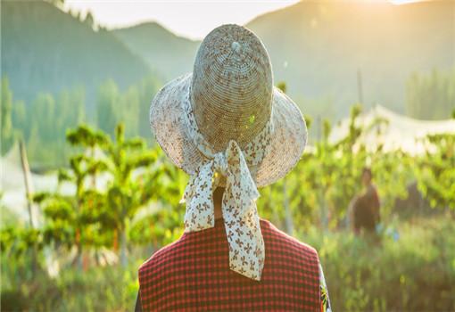 2020年云南康养旅游发展具备哪些资源优势?现状如何?