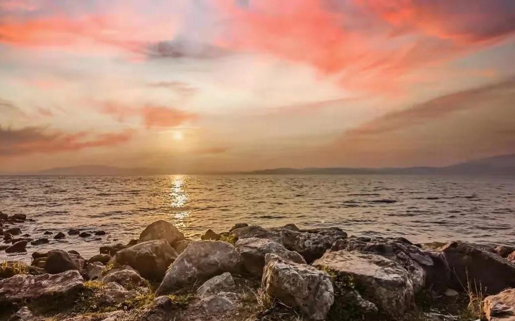 188bet官网手机版下载策划公司  遇见188bet官网手机版下载最美海岸线,湿地水杉藏着绝美落日!